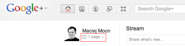 google+ page badge (1) switch profile to your page